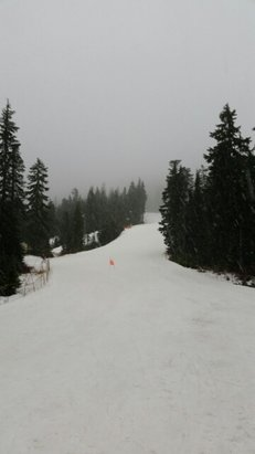 Cypress Mountain - There was wet snow today. Only 1 decent run open. Lots of rocks, branches and other debris. Limited visibility, but no wait at the chairlifts. Got completely soaked in 2 hours. Looks like more snow to come..  - © Kanuk
