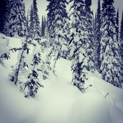 Revelstoke Mountain Resort - So nice ❄️❄️❄️ - © snowons