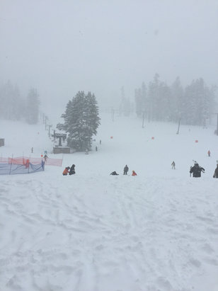 Bear Valley - Bit of a snowstorm put gonna be getting a lot of POW today!!! Runs are excellent 