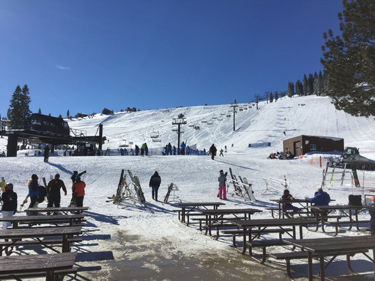 Tahoe Donner - Snow was great today. Not Too crowded either.  - © Dino Phua's iPhone