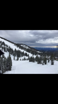 Mount Shasta Board & Ski Park - Good day on the Moutan. Conditions were great. Snowed for a little bit, not too heavy of a snow fall during the time though. - © Sierra's iPhone