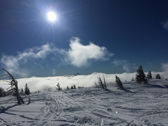 Mt. Hood Meadows - It was awesome today! Not too many people but the snow was perfect and no wind! - © gnar