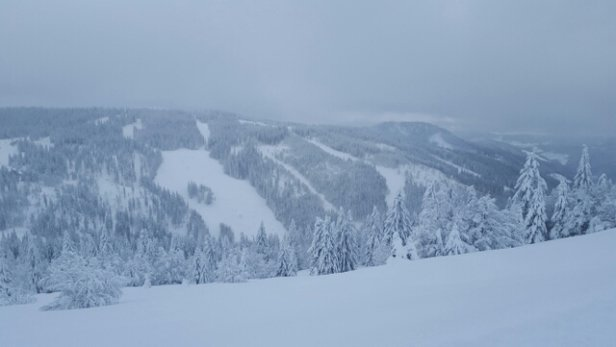 Feldberg Wintersportzentrum - A great snowy Sunday. - © mlang12271