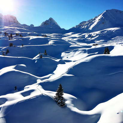 La Plagne - The best day of the week and 90%of the domain is open. - © Frederik F.