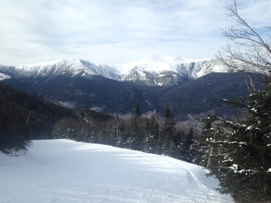 Wildcat Mountain - Beautiful Empty nice packed powder - © GARY's iPhone