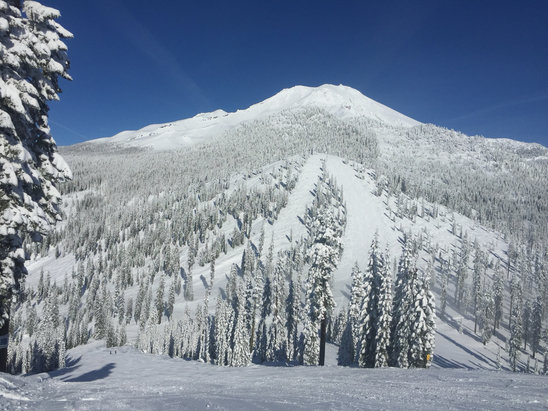 Mount Shasta Board & Ski Park - [! skireport_firsthandpost_pagetitle ] - © Pierre Carr's iPhone 6