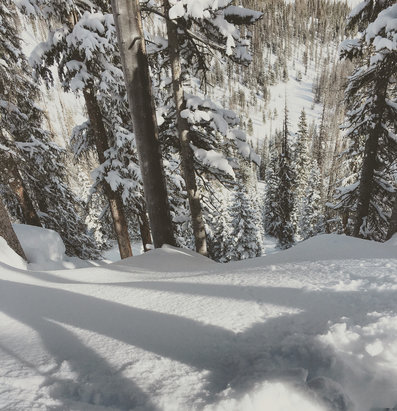 Wolf Creek Ski Area - Powtastic!!!! It's everywhere  - © Stephen's Iphone