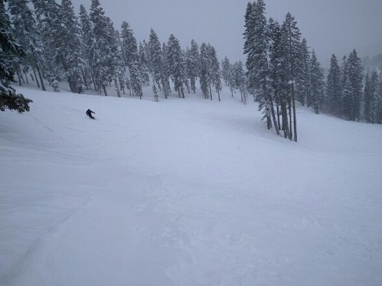 "Diamond Peak - About 3-4"" of fresh powder on hard groomed underneath. Very soft. Runs vacant, no lines.  Beats the crap out of Squaw Valley yesterday, especially with tickets half the price. - © anonymous user"