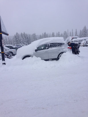 "Grand Targhee Resort - 21"" of fluff  in 2 days! 