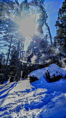 Bridger Bowl - 13 inches of new snow yesterday was amazing   - © Donnie Williams's iPhone