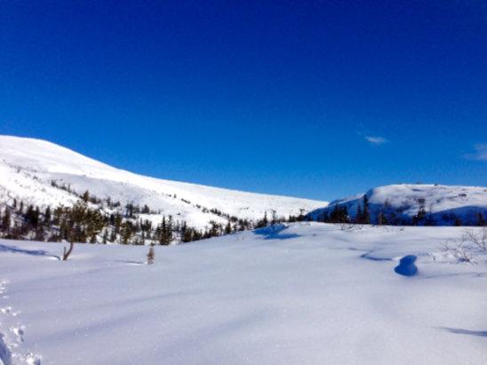 Norefjell - Fantastiske forhold både i alpinbakke og på langrenn. Glitrende nysnø, nypreparerte løyper, sol fra knallblå himmel og 2 minusgrader. Kan det bli bedre? - © Annes iPad