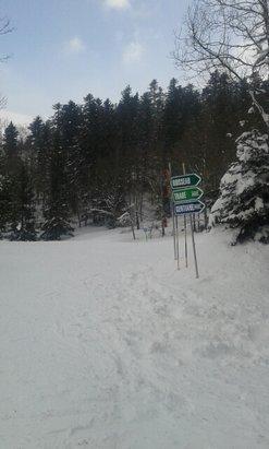 Mijanès - Donezan - De la bonne neige.  Maintenant il manque le soleil !! - © isa