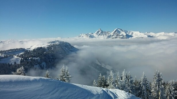 Les Carroz - Great conditions above the clouds today - © davidlindsay174