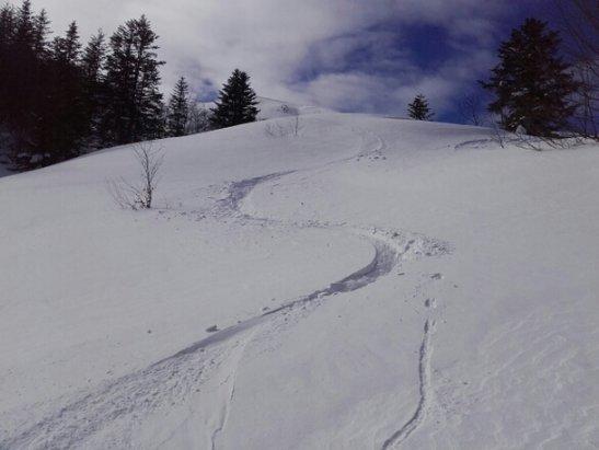 Les Monts d'Olmes - encore  du vent mais de la bonne neige ce mardi sur les Monts d olmes dans les combes abritées  . . - © francisarcens