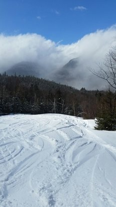 Wildcat Mountain - nice deep powder up top but tracked out with thick / sludgy snow at the bottom... good coverage thanks to last night's snow.  Once they groom it tonight it should be great again.  it was snowing when I left at 2pm. - © albrown615