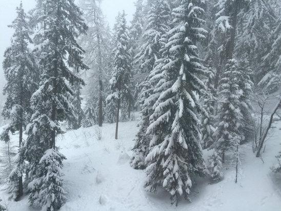 Les Arcs - Neige neige neige Avec le vent qui a soufflé fort en altitude des plaques de verglas apparaissent ça et là mais pour les amoureux de poudreuse et de super neige précipitez vous - © BabiPhone