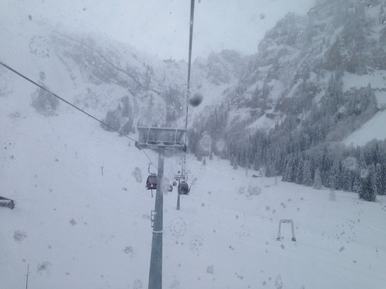 Engelberg - A bit foggy on the top but still very good for skiing in a fresh snow. - © iPhone Nino