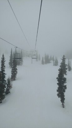 Wolf Creek Ski Area - It's snowing now, better come and get it while you can.