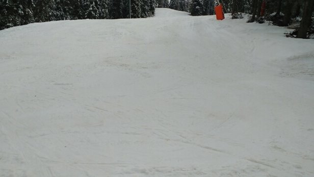 Pamporovo - good skiing on upper levels after last night's snow. photo top of black 3.    - © rowlandalan010