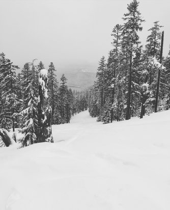 Willamette Pass - Beyond epic  - © [! skireport_default_author ]