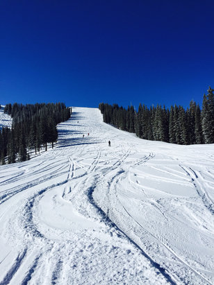 Telluride - Three inches was just enough to make for a great day. Fresh tracks and warm sun.