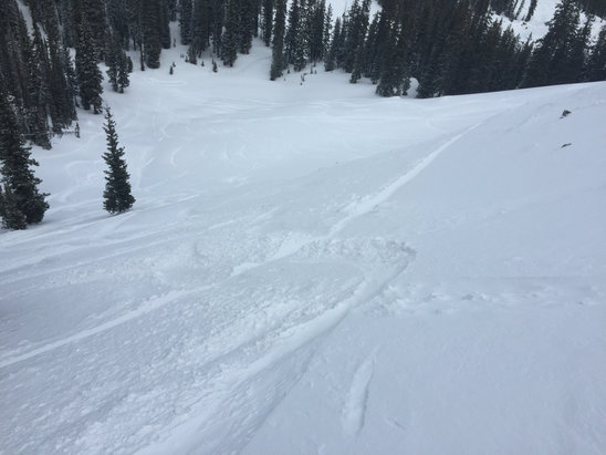 Crested Butte Mountain Resort - Two feet of powder in my secret spot. 