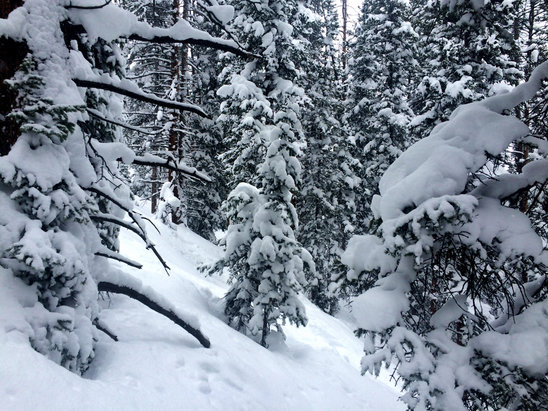 Winter Park Resort - Unbelievable the last 3 days, all time out here. - ©Ryan's iPhone (5)