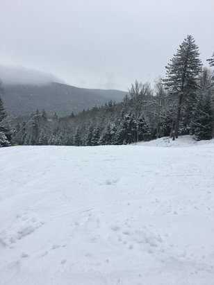 Snowshoe Mountain Resort - The snow is wet and grippy. Not worth the trip up as it is now raining :-( the areas of rocks are covered up so if you do come bring your crappy skis!!  - © the dude