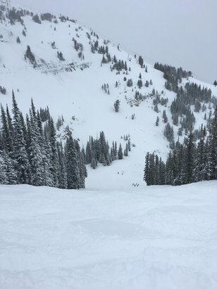 Jackson Hole - Amazing powder day!  - © Daniel's iPhone