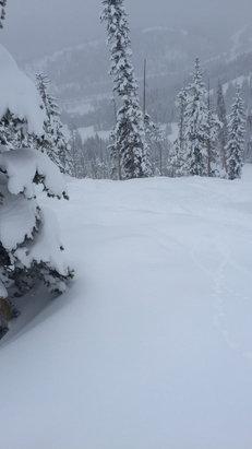 Winter Park Resort - Knee deep untracked freshies. Amazing day - ©kelli's iPhone