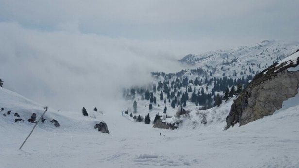 Piancavallo - uffa la nebbia  - © cristianoazzato1