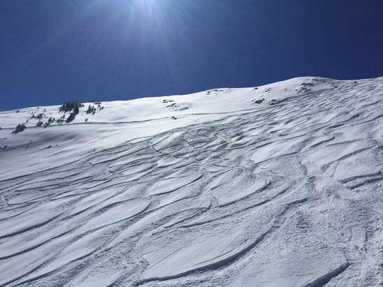 "Taos Ski Valley - Epic powder on Kachina today 6-8"" new  - © Greg's iPhone"