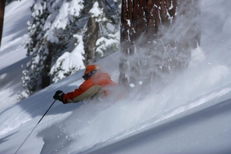 Ein Skifahrer powdert am Mount Bohemia