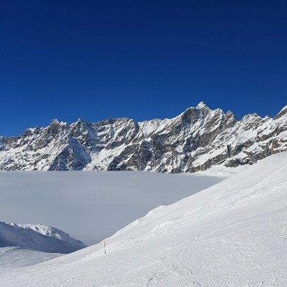 - © skiër Auke