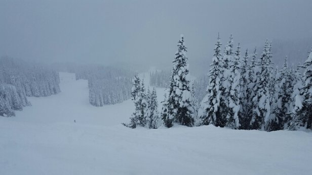 Crystal Mountain - Hit the slopes on Monday 12/5 and had great pow all day. looks like winter is finally here!  - ©JG