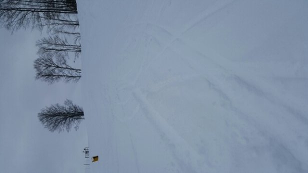 Treetops Resort - I could not see my skis today with so much new snow! - ©kbelosky70