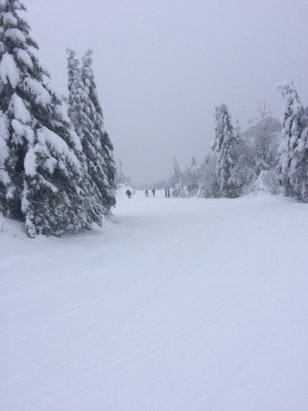 Tremblant - Great skiing. Lots of snow. Not too much wind.