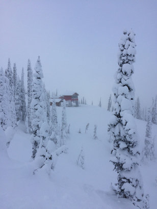 Fernie Alpine - Beautiful out here, plenty of snow if you know where to look - © Eric's iPhone