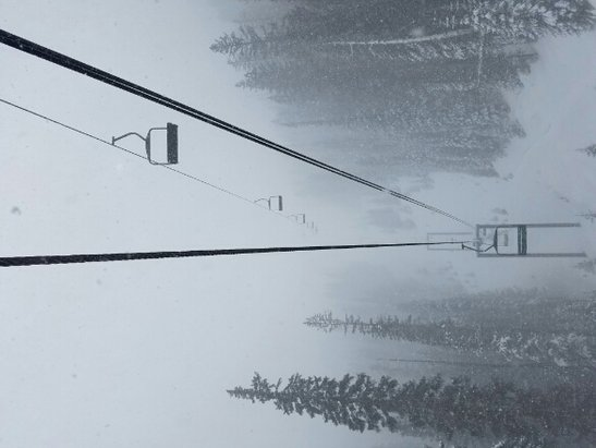 Sunrise Park Resort - the groomers can't keep up... but great powder.  - © anonymous