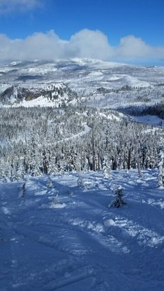 Hoodoo Ski Area - Packed powder and still some stashes in the trees, fun fun  - © anonymous