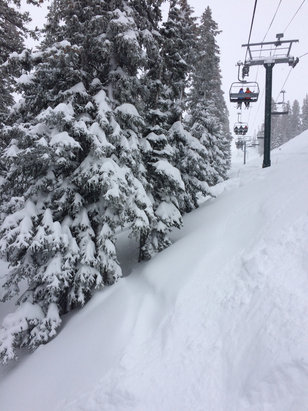 Brighton Resort - Still coming at us with that new stuff! Fluffy everywhere  - © Big B