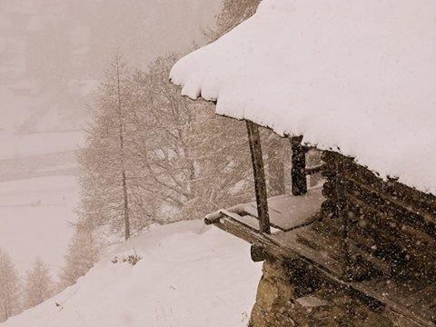 - © facebook Monterosa Ski
