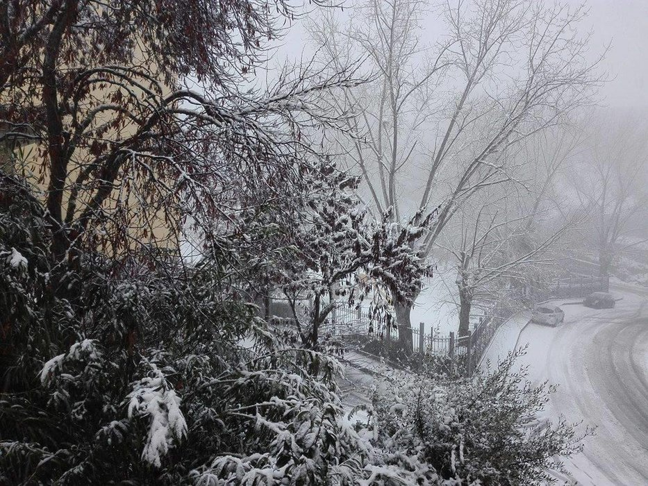 Neve fresca in Sardegna! Città: Ozieri - © Sardegna Live Facebook - Foto di Roberta Bertulu