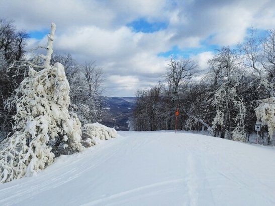 Belleayre - great pow day! agreed on corny leash law put in place all of a sudden.  - © anonymous