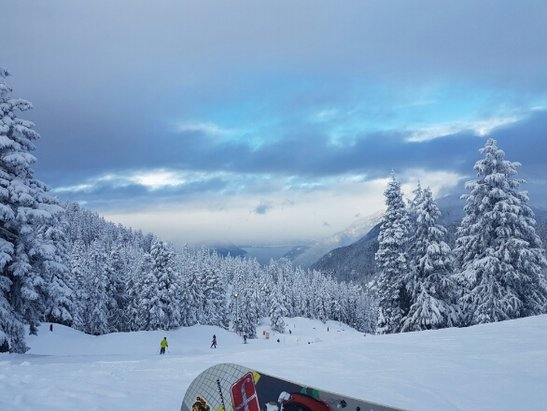 Cypress Mountain - Start of the week (Monday 6th Feb) had great conditions. Deep base and soft pack. very nice runs, not too busy. Freezing rain coming will put a damper but if we get more real snow it will extend the season! - © anonymous