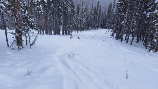 Nakiska Ski Area - still a lot of good snow! groomers were super soft and the glades still have a lot of powder.   - © good time skier