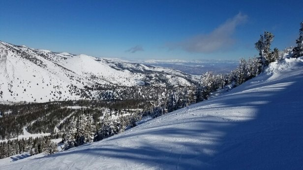 Mt. Rose - Ski Tahoe - blue bird sky, groomers fast, no crowds. Great day! - ©Skigap
