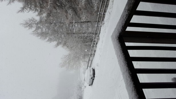 Sauze d'Oulx - Snowing a lot this morning.  - ©anonymous