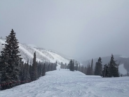 Park City - Powder powder everywhere! A little uneven in spots but McConkeys was EPIC this morning.  - © anonymous