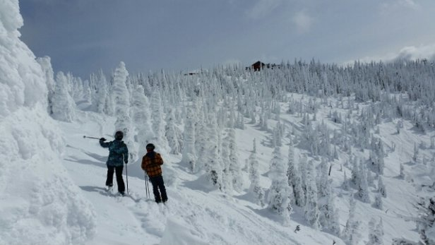 Whitefish Mountain Resort - Epic conditions on Monday and Tuesday at the fish! So much good snow and even some fresh pow in places - © anonymous